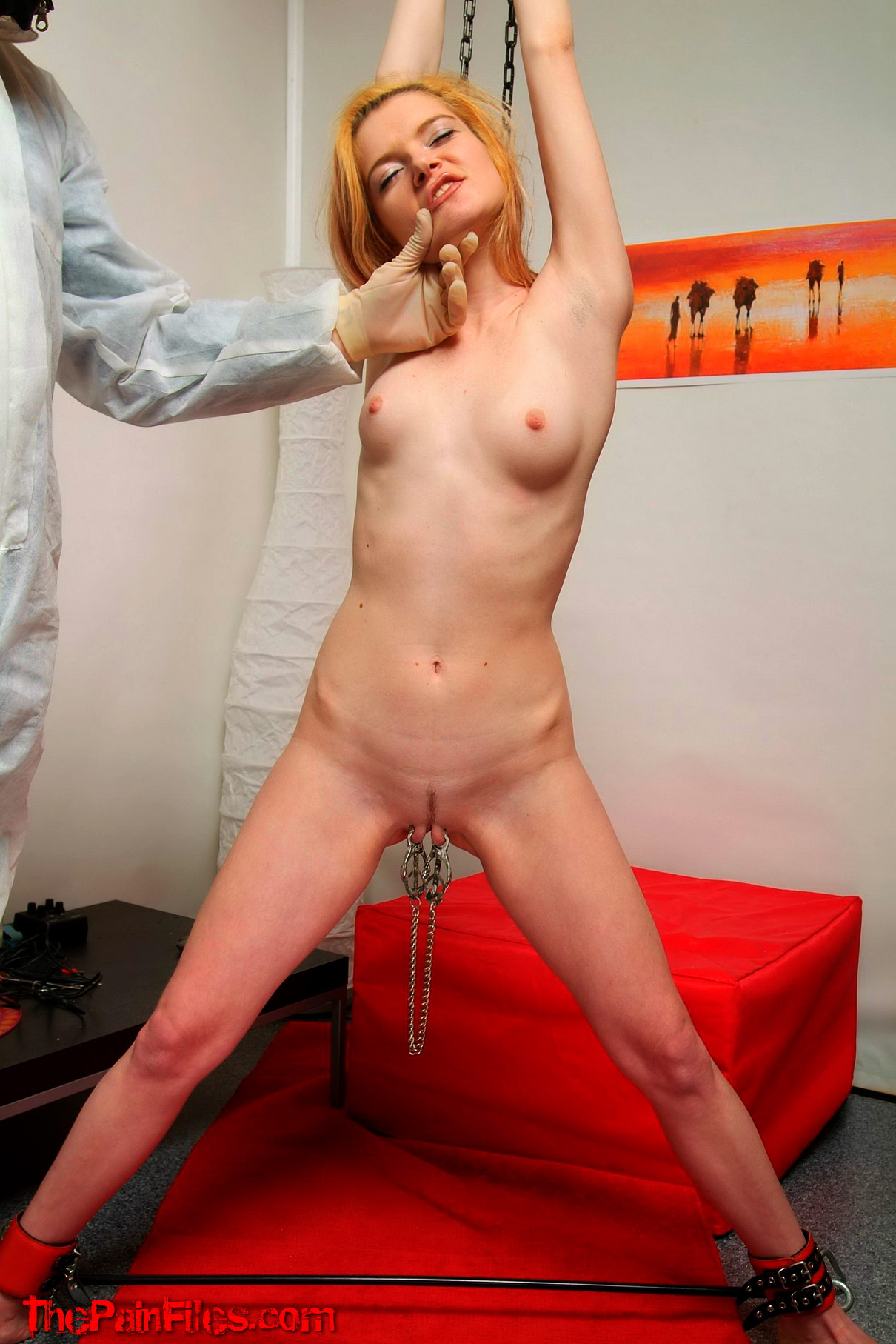 Bdsm blonde girls